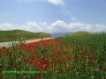 دهستان هزار مسجد ( لایین نو ) 1