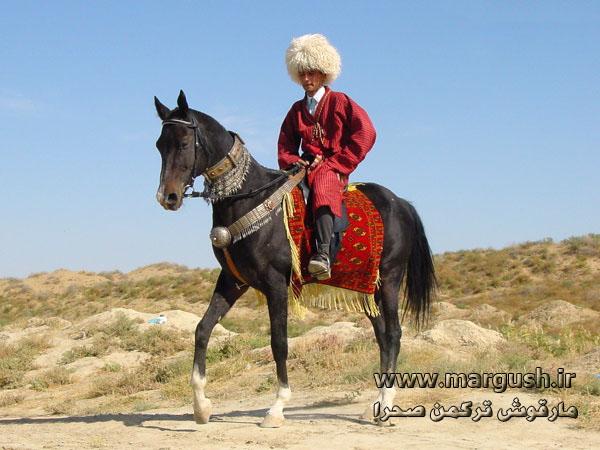 Turkmen At01