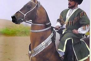 تاریخچه اسب ترکمن (۳)