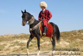 تاریخچه اسب ترکمن (۲)