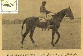 کسب مقام اولی توسط سوارکار ۸۰ ساله ترکمن