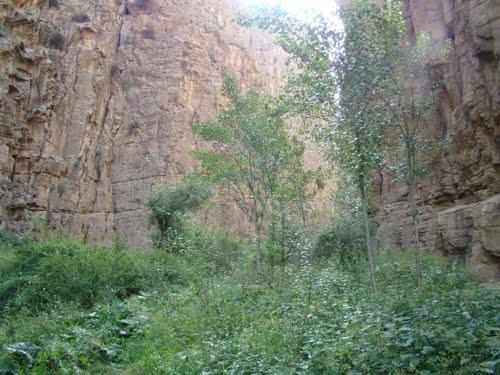 دره شمخال 4